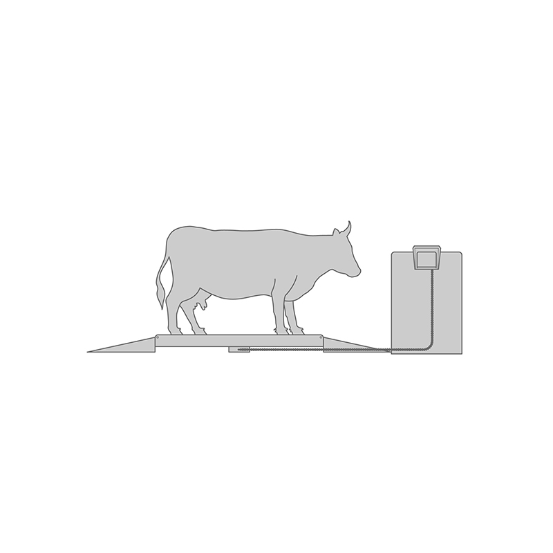 Livestock weight monitoring