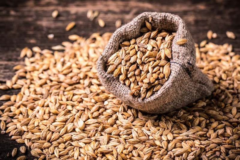 Brewing innovation from barley harvesting to brewery